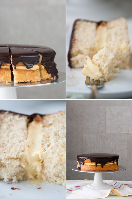 pie_boston_cream_quad